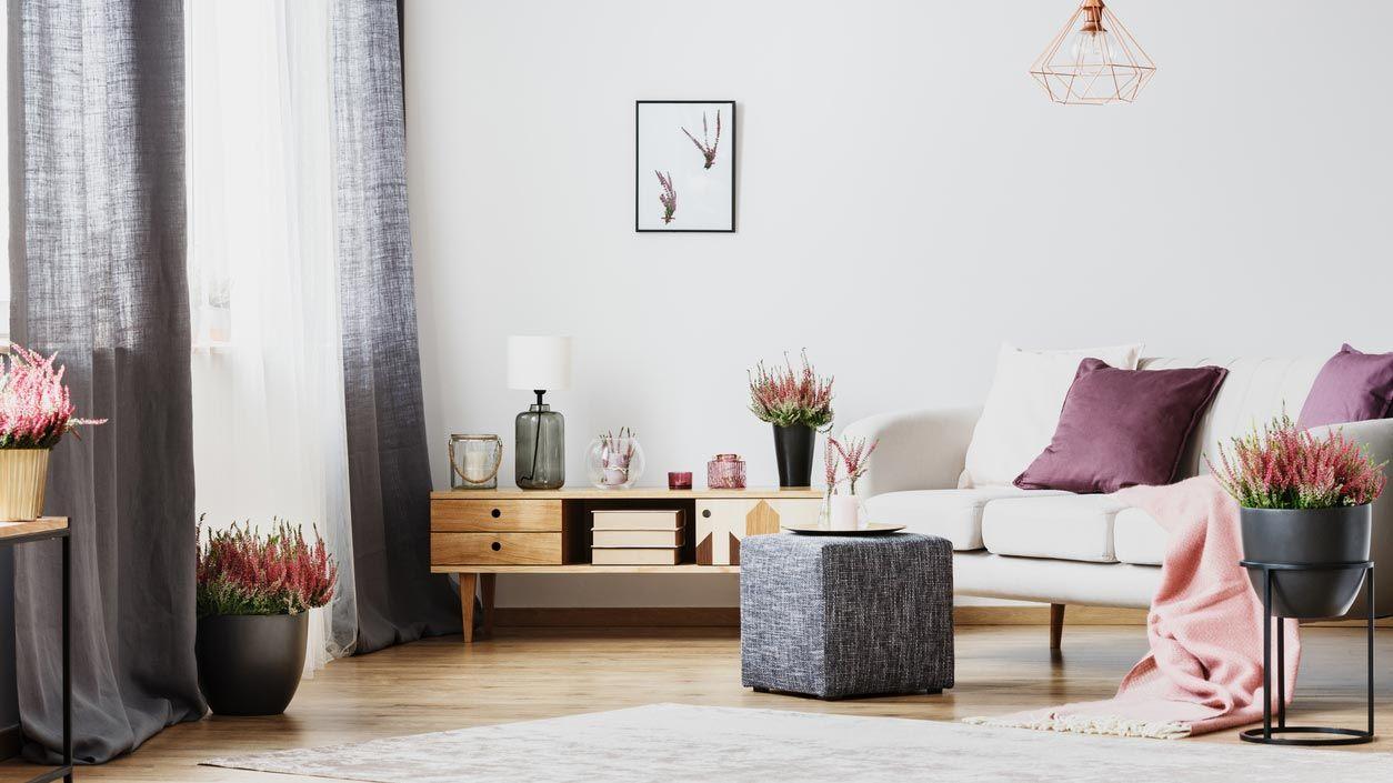 Cojines violetas desaturados para decorar el sofá