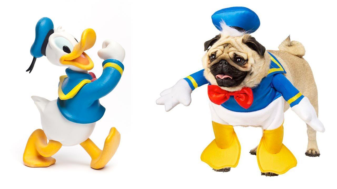 Disfraz del Pato Donald para mascotas