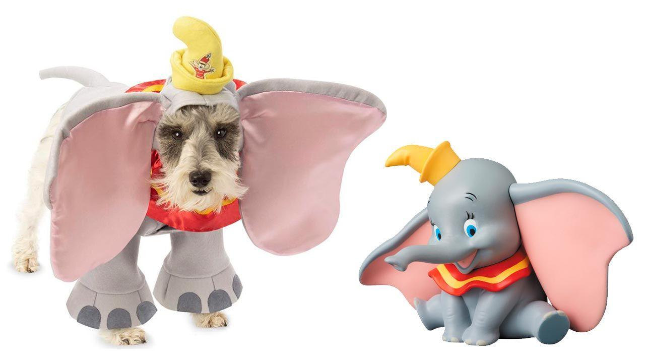 Disfraz de Dumbo para mascotas