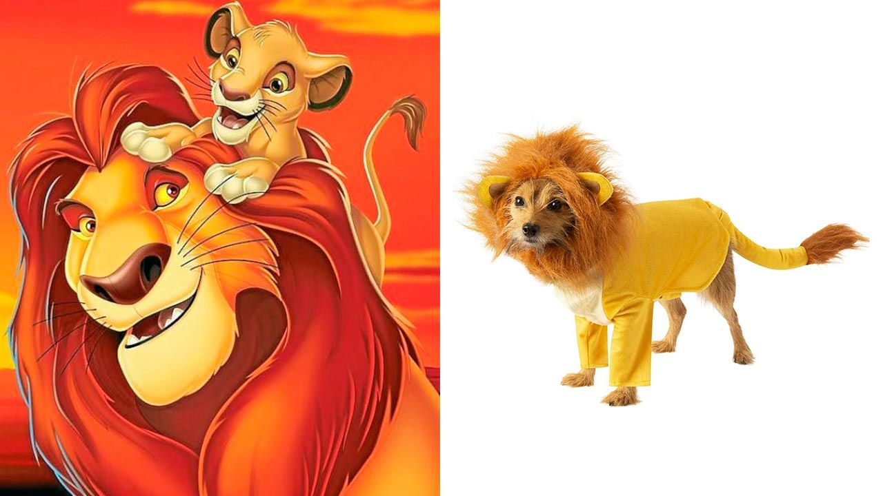 Disfraz de Simba para mascotas