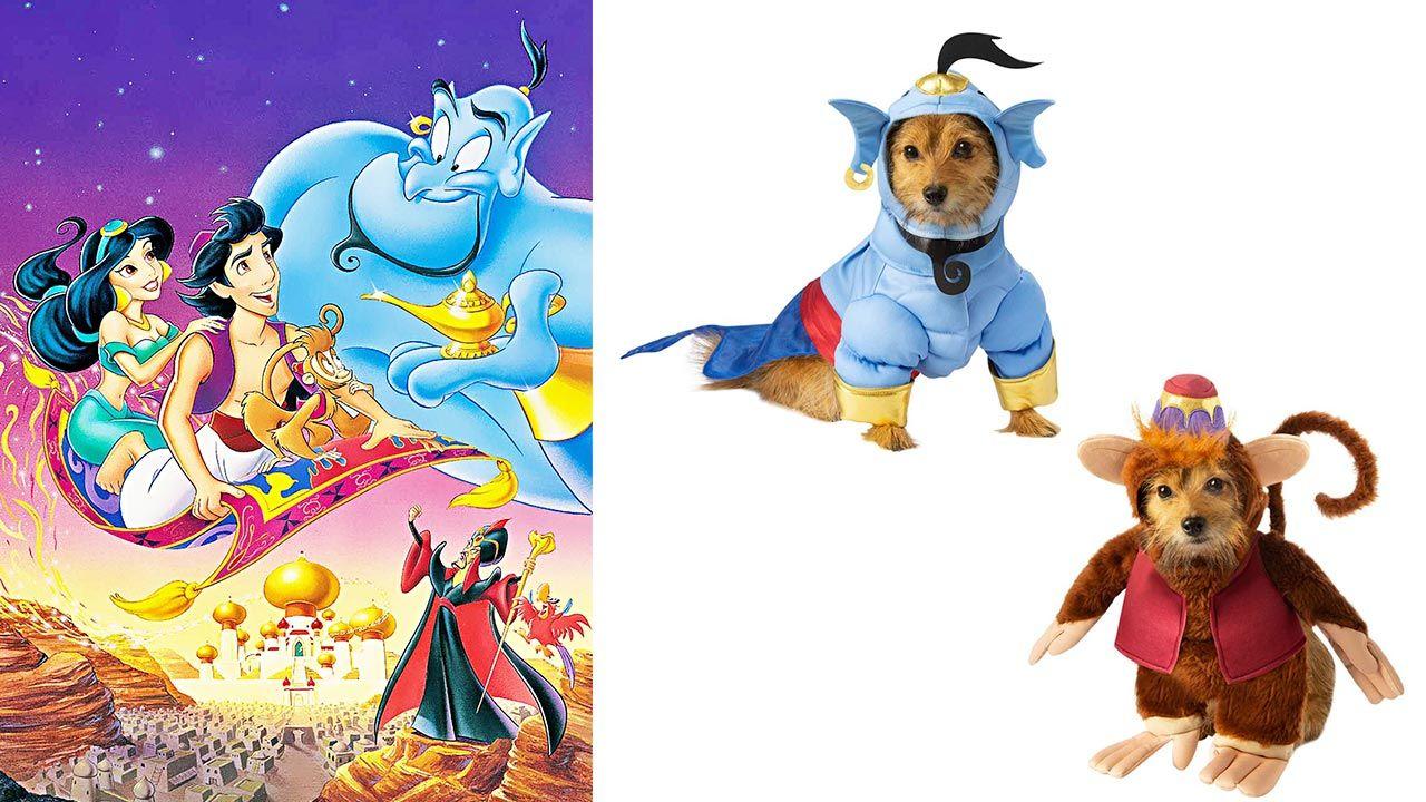 Disfraces de Aladdín para mascotas