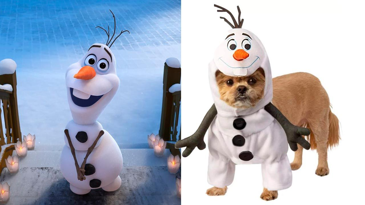 Disfraz de Olaf para mascotas