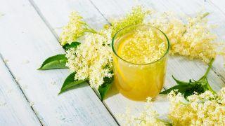 El saúco y sus propiedades medicinales - Colutorio - Gargarismos