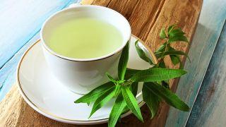 Hierbaluisa, planta medicinal calmante y tonificante - Infusión