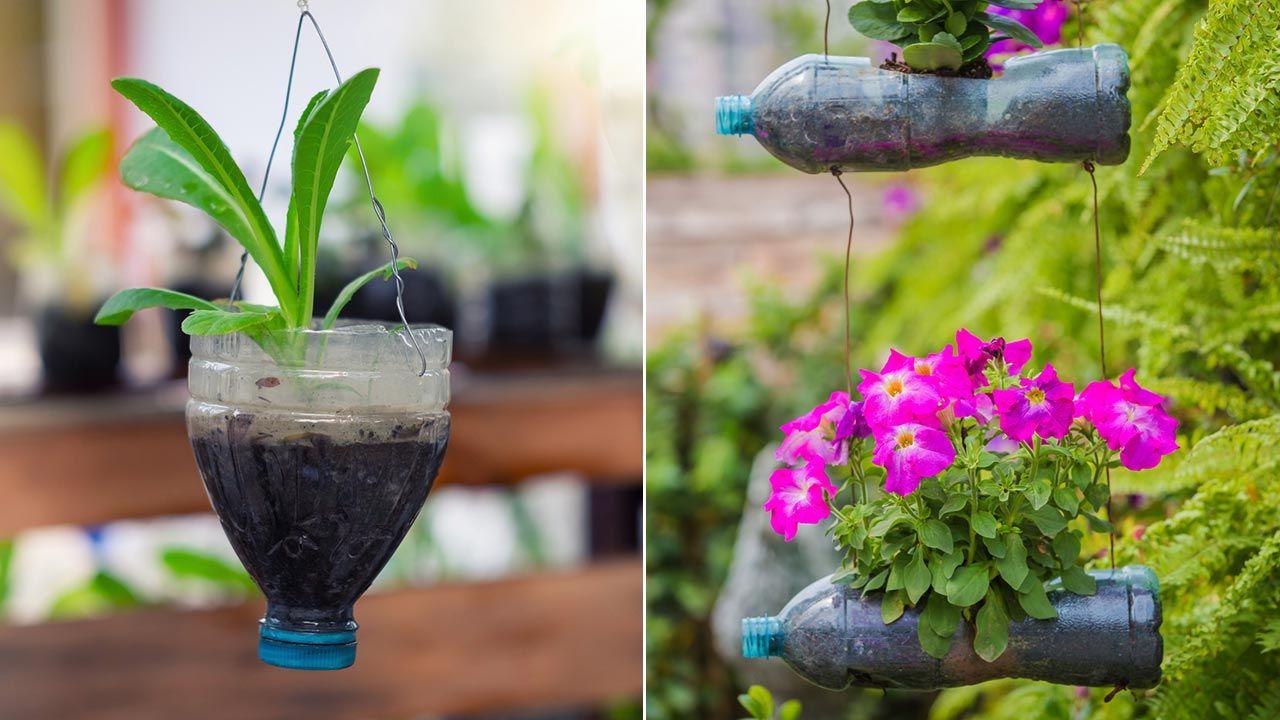 Maceteros colgantes con botellas de plástico