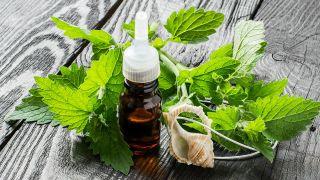 Melisa, planta medicinal relajante y tonificante - Aceite para masaje