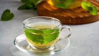 Melisa, planta medicinal relajante y tonificante - Infusión