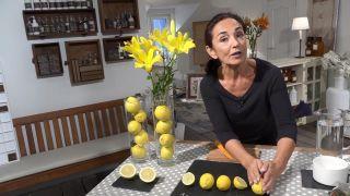 Tips para dejar de fumar y limpiar las vías respiratorias - Dos limones