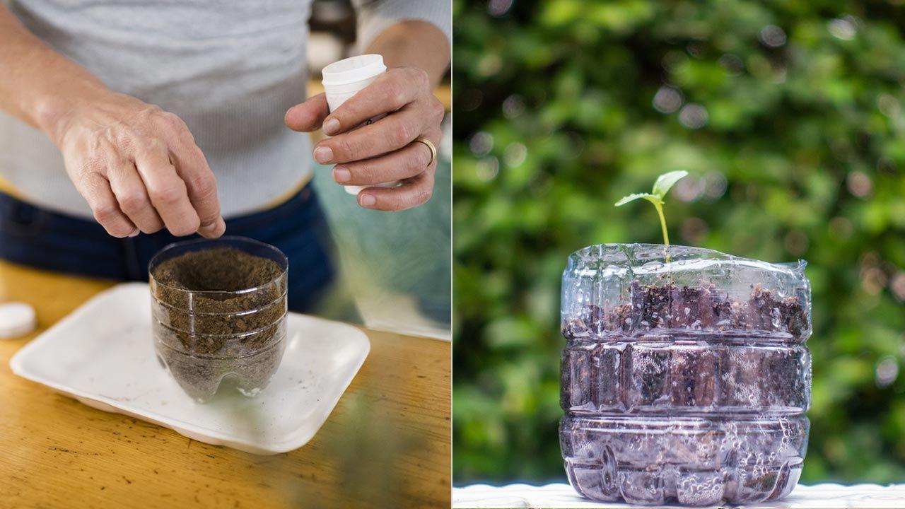 8 usos de la botella de plástico en la jardinería