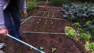 Cómo instalar un invernadero en la huerta - paso 2