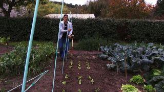 Cómo instalar un invernadero en la huerta  - paso 3
