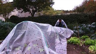 Cómo instalar un invernadero en la huerta - paso 4