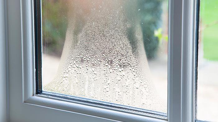 ¿Cuál es la humedad ideal para casa? Elimina las humedades y mejora la decoración