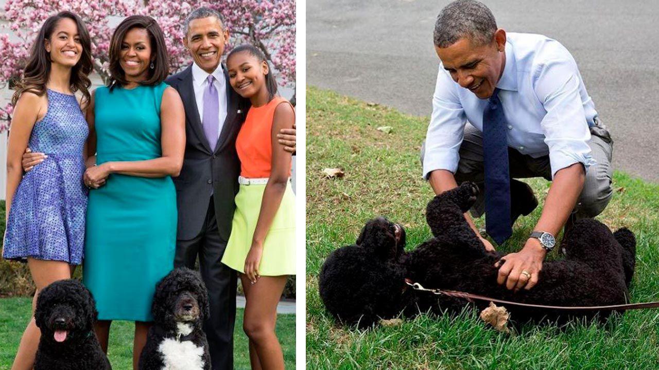 Bo y Sunny junto a la familia Obama