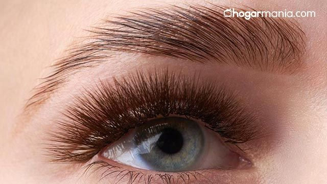 ¿Qué es el laminado de cejas y cuánto dura?