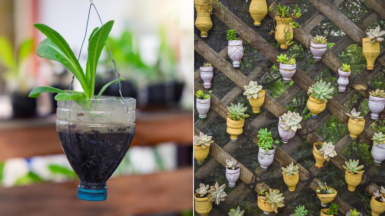 reutilizar botellas de plástico como maceteros