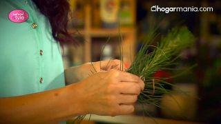 Disponer las ramas de igual medida de todas las plantas escogidas, cortar y colocar hasta que sean de igual longitud - Paso 2