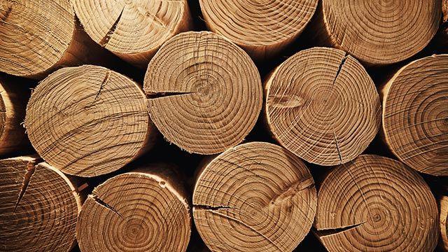 Secar madera sin que se raje