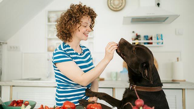 Chica ofreciendo un snack a su perro