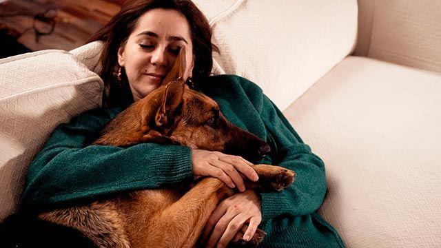 Perro adulto abrazado a su dueña