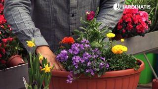 Composiciones florales para principios de primavera