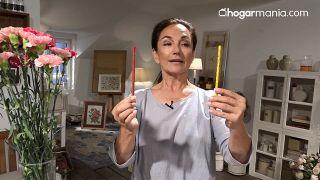 Dos ejercicios y un clavel para una mirada radiante - Dos lápices