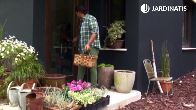 Plantas para decorar la entrada de la casa en primavera y verano