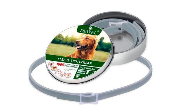 Collar antiparásito para proteger al perro durante 8 meses