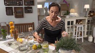 Aromaterapia: cómo hacer ambientadores caseros con cítricos - Eucalipto