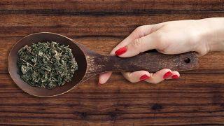 Bardana, planta medicinal limpiadora y antiinflamatoria - Emplasto