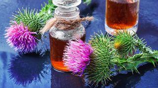 ardana, planta medicinal limpiadora y antiinflamatoria - Infusión