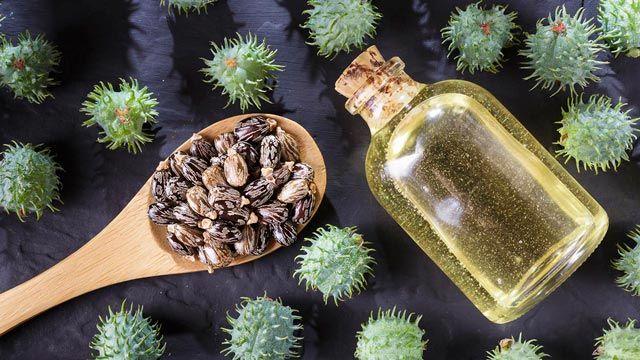 Beneficios y propiedades del aceite de ricino para la piel y el cabello