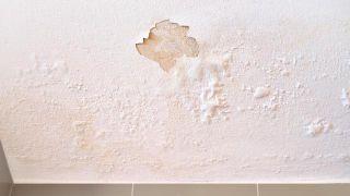 ¿Cómo arreglar el desconchado del techo del baño?