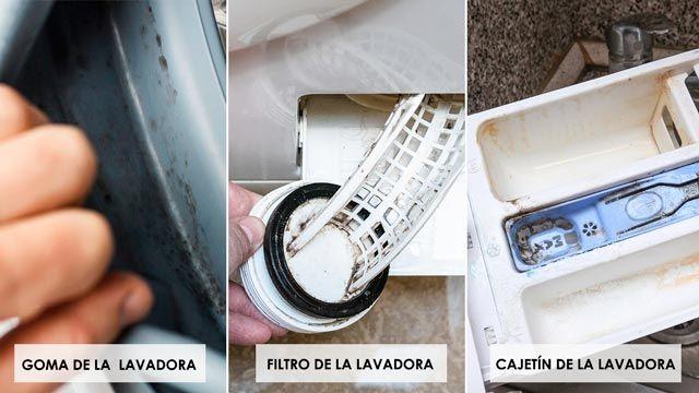 Cómo limpiar la lavadora por dentro: filtros, goma, cajetín
