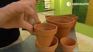 Contenedores pequeños para plantas pequeñas