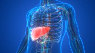 ¿Cuáles son los síntomas del hígado graso?