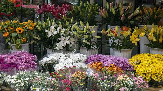 Ideas para regalar flores el Día de la Madre