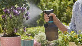 Pulverizador para plantas de interior con EasyPump