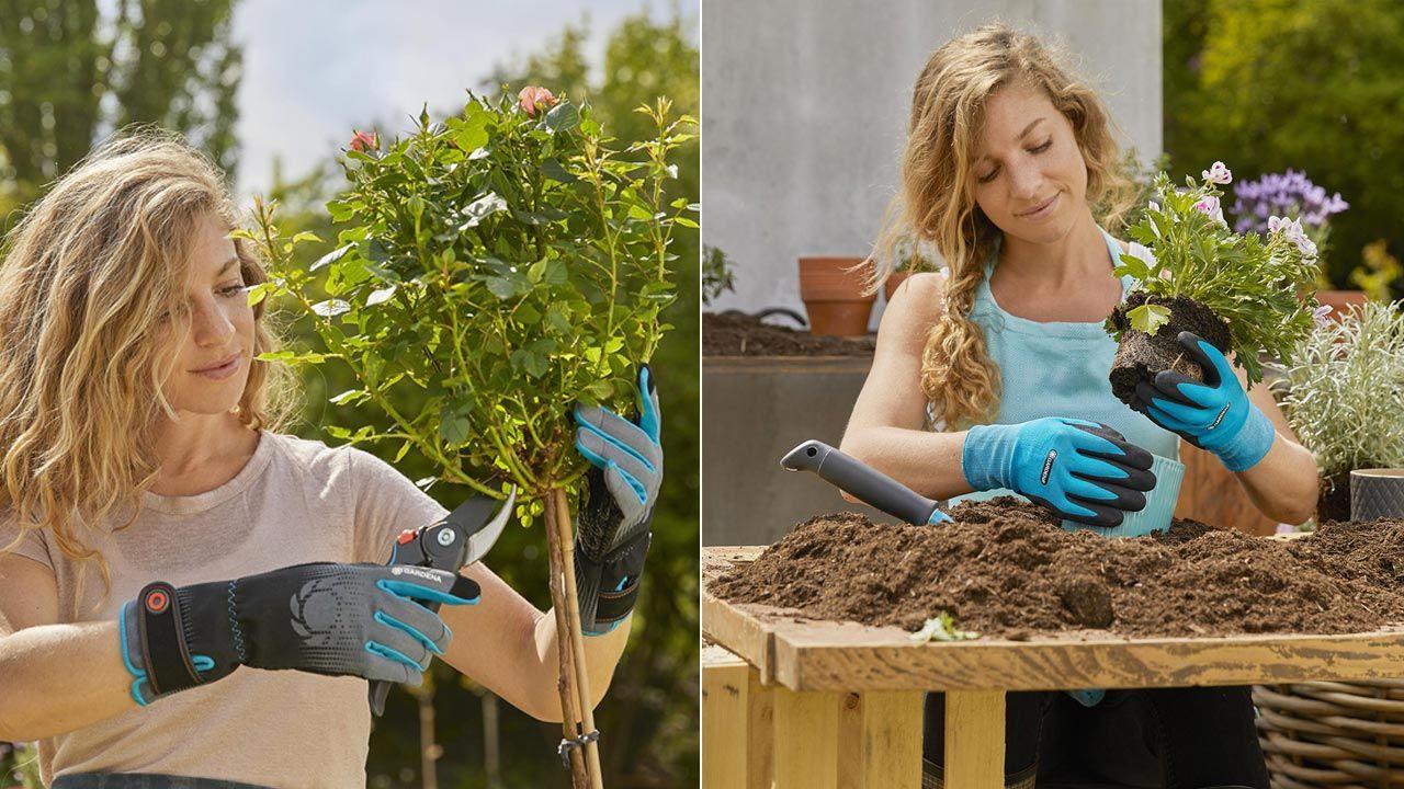 ¿Qué tipo de guantes de jardinería necesitas?