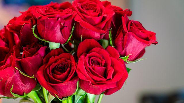 Rosas para el Día de la madre