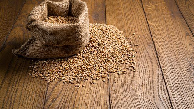 Trigo para hacer saquitos de semillas