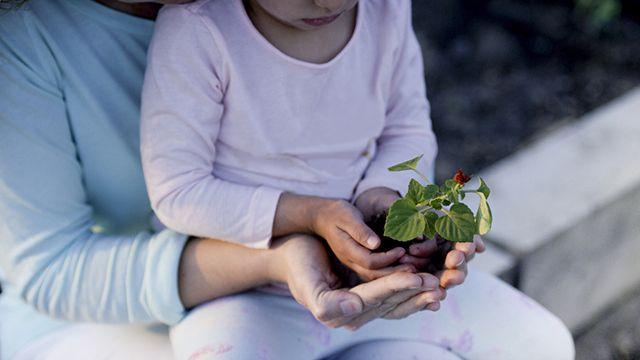 tareas de jardinería para compartir con los hijos