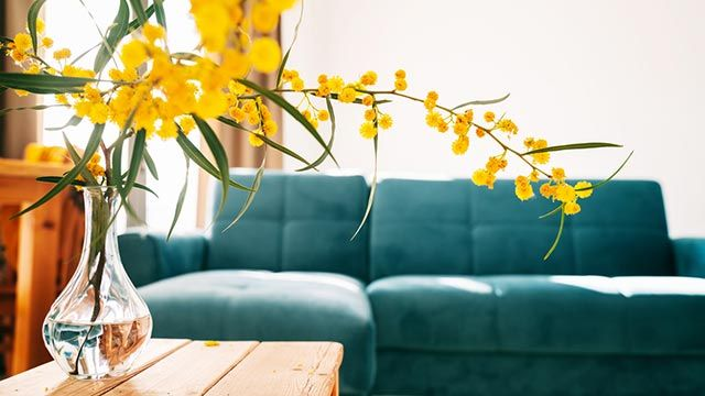 7 ideas para cambiar el 'look' a tu casa esta primavera - Flores y plantas