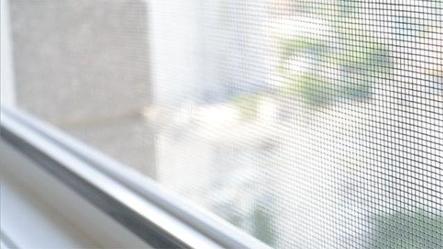 7 razones para pedir hoy tus mosquiteras