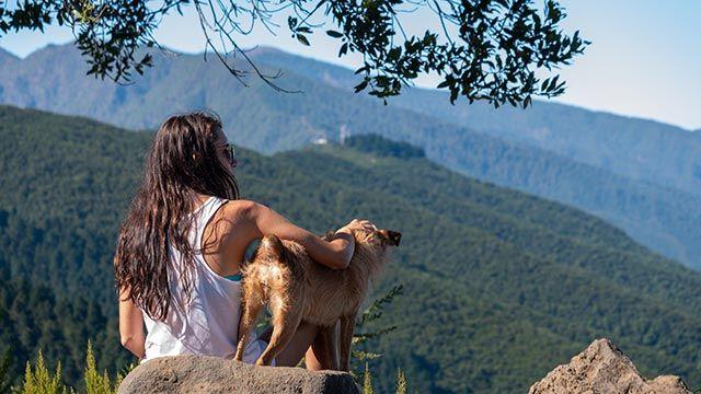 Alojamientos y playas aptas para mascotas - Perro en el monte junto a su dueña