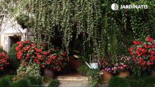 Composición floral para la entrada de la casa