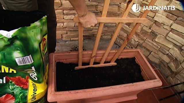 Estructura para cultivar chayotes y judías en la terraza