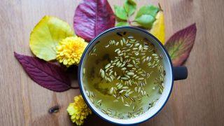 Hinojo, planta contra la indigestión - Infusión