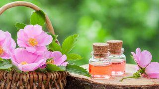 La rosa mosqueta, una joya de la naturaleza para tratar estrías y quemaduras