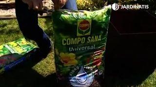 Sustrato hidrocontrol en la plantación de Cleome ''Senorita Rosalita'' y la Euphorbia ''Diamond Frost''